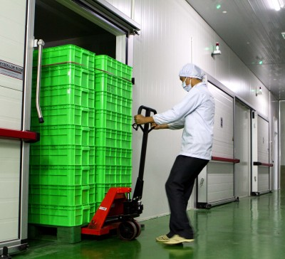 Oxy-Low®  Organic Fumigation Room
